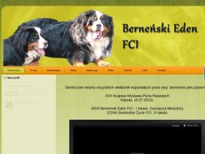 Berneński pies pasterski z rodowodem (hodowla Dziekanów Dolny)